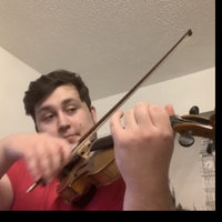I am Violinist with great experience in  solo, orchestral and chamber works and positions. I can teach all levels from beginners to intermediate to advance.